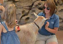 Image of Zoo employee with child brushing goat