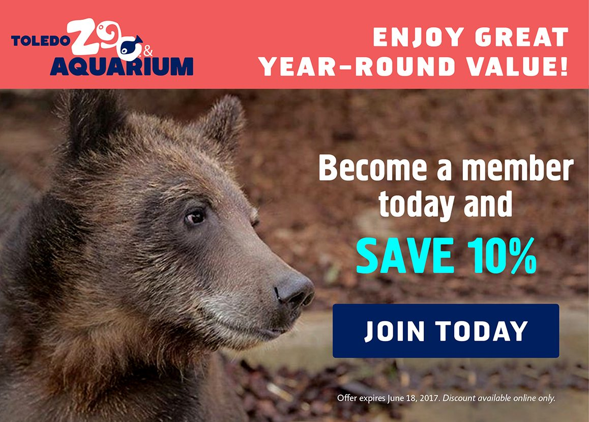 Become a member today and save 10 percent