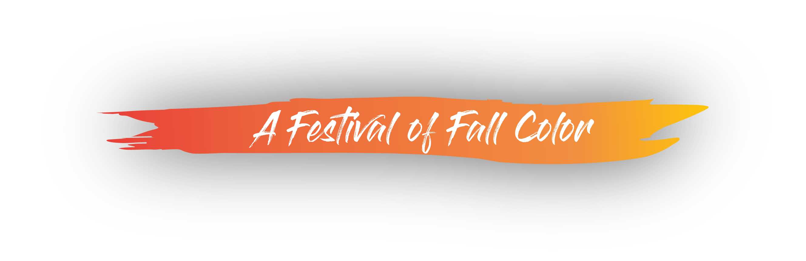 A festival of fall color